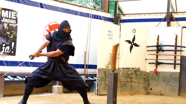 ninja - iga